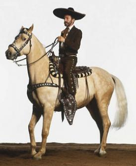 Mexican Charro Outfit